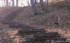 hummel-park2